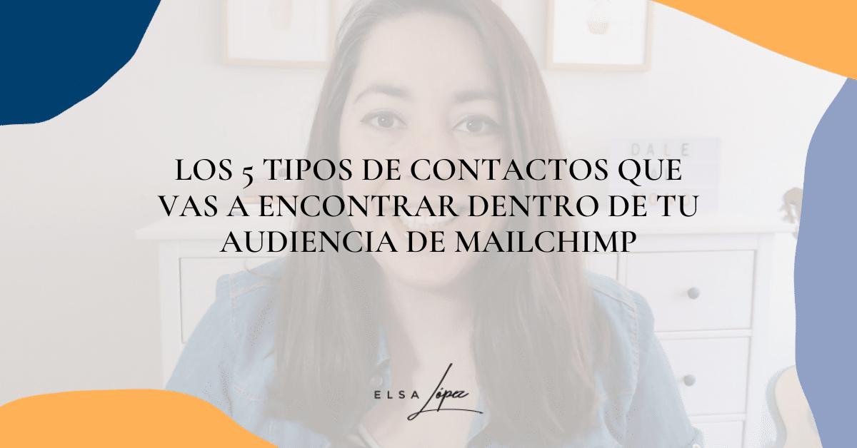 5 tipos de contactos que hay en mailchimp